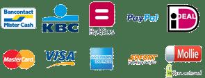 veilig online betalen voor ballonvluchttickets